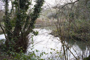 Maidstone Walking Group - Lake 4
